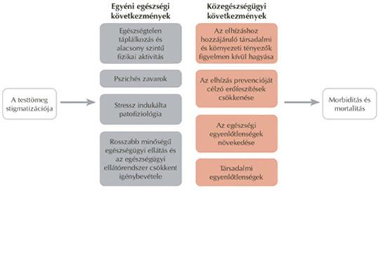 látásromlási tényezők)